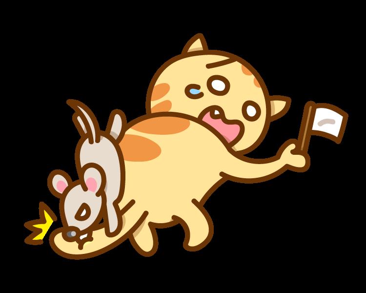 mouse-bites-cat